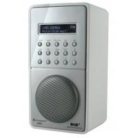 Soundmaster DAB100WS